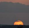 Sun Dipping Below Horizon and Bird in Silhouette