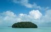 Offshore Mangrove Island