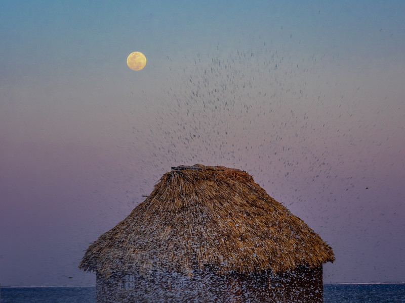 Rising Full Moon, Grass Hut, and Splash from Crashing Wave, 5:40pm, Feb 18 2019