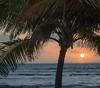 Sun Rise Framed by Palm Tree, 6:22am, Feb 21 2019