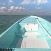 Fly Rods Ready to Go, Ascencion Bay MX