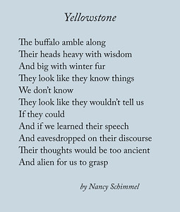 Yellowstone, a poem by Nancy Schimmel