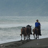 Caballero on the Beach, Osa Peninsula