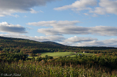 Late afternoon, Catskill Mountains, New York