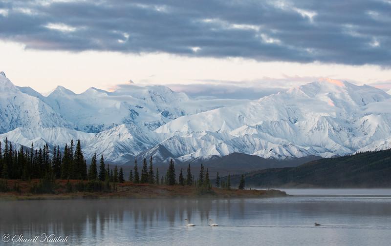 Dawn over Alaska Range from Wonder Lake, #1