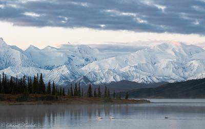 Dawn over Alaska Range from Wonder Lake, #1