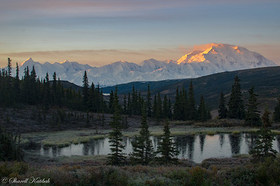 Denali Sunrise and Moose Pond