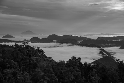 Morning View from Borneo Highlands, Black and White