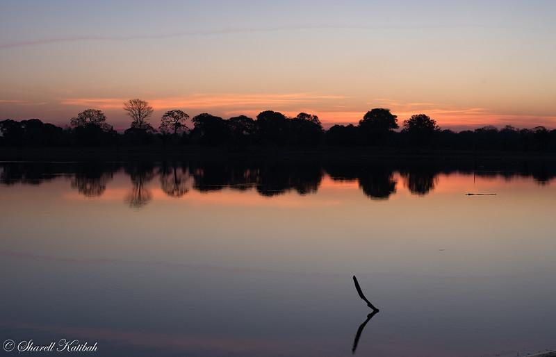 Sunset Colors, Fazenda Barranco Alto