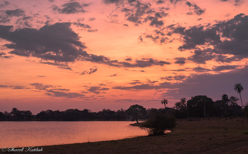 Purple and Pink Sunrise, Fazenda Barranco Alto