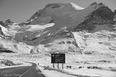 Icefield Parkway, Black and White