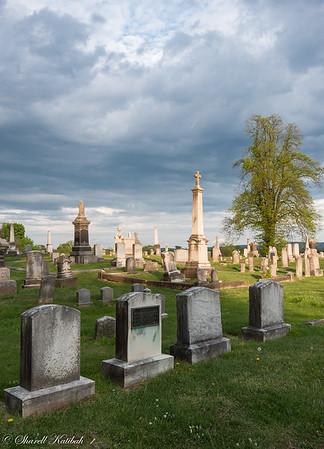 Burst of Sunlight, Edge Hill Cemetery