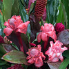 Flower Arrangement, Hana Farms