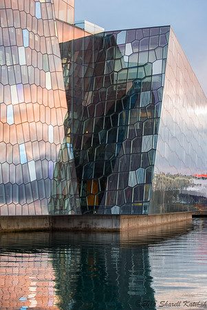 Harpa in the Golden Hour