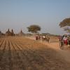 Carriage Rides Through Bagan