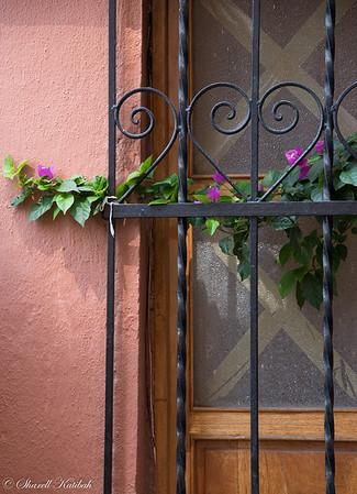 Flowers, Gate and Door