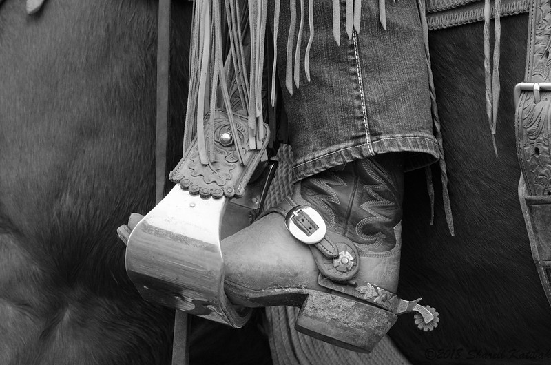 Boot, Spur, and Chaps, Black and White