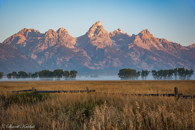 Tetons and Mist in Early Morning Light