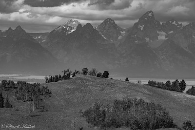 Tetons from Atherton Ridge, Black and White