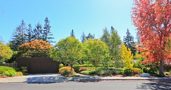 849 Tolman Drive, Stanford
