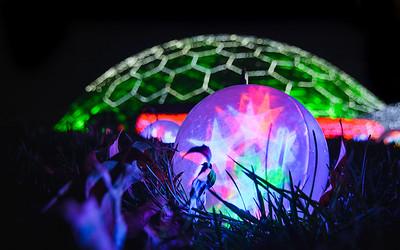 Missouri Botanical Gardens: Garden Glow