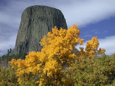 Bear Lodge. Devil's Tower National Monument, Wyoming