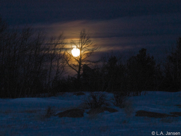 New Year's Blue Moon, December 31, 2009