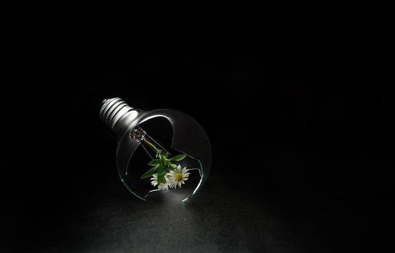 alternative light III (experimentation)