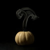 smoked pumpkin II