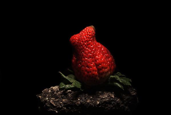 no strawberries were photochopped...
