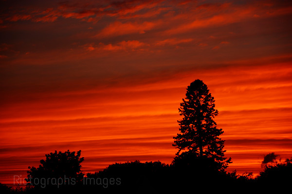 Fiery Skies At Sun Set