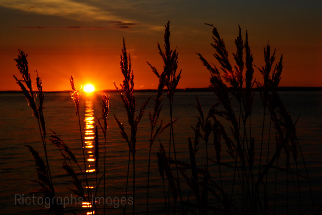 A Sunrise Photo Summer 2016, Rictographs Images