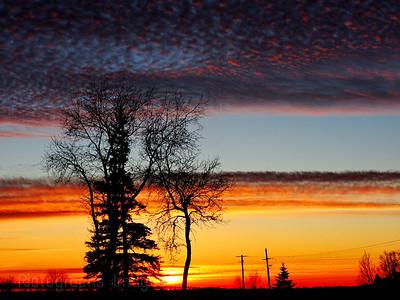 January Sun Set