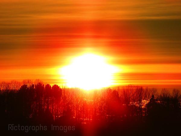 Nature, Trees, Sun Setting