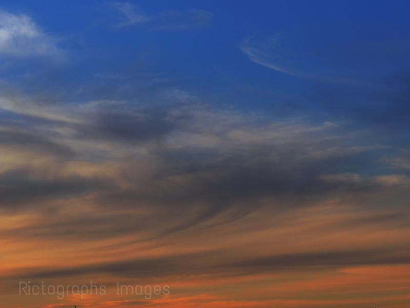 June  2014, Orange, Blue Sky, (49)