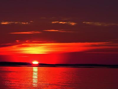 Sun Riser, Summer 2018