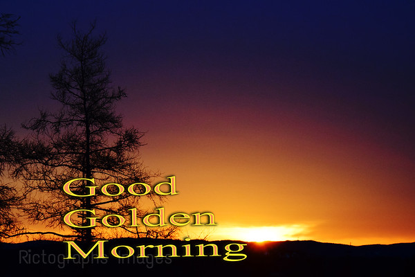 Good, Good Mornings