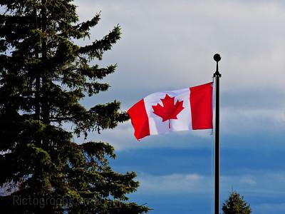 Canada's Flag, 2019