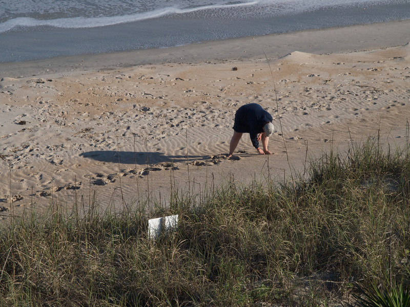 Margie looking for shells and sharks' teeth. Topsail Island, North Carolina.