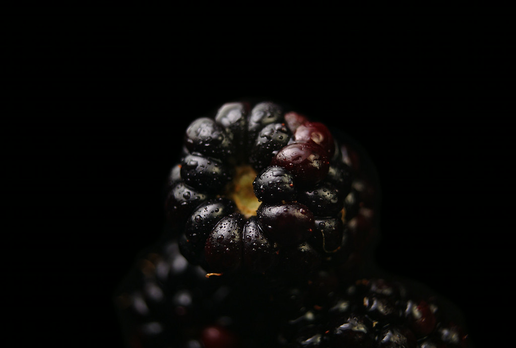 berried (#nerdist #howtodoeverything #theread #planetmoney #thanks!)