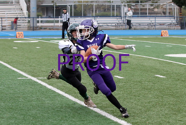 Shasta Junior Football