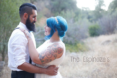 Shauna & Armando - Engaged  2016