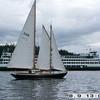 SJIYC 2008 Shaw Island Classic - Photo by Bill Waxman