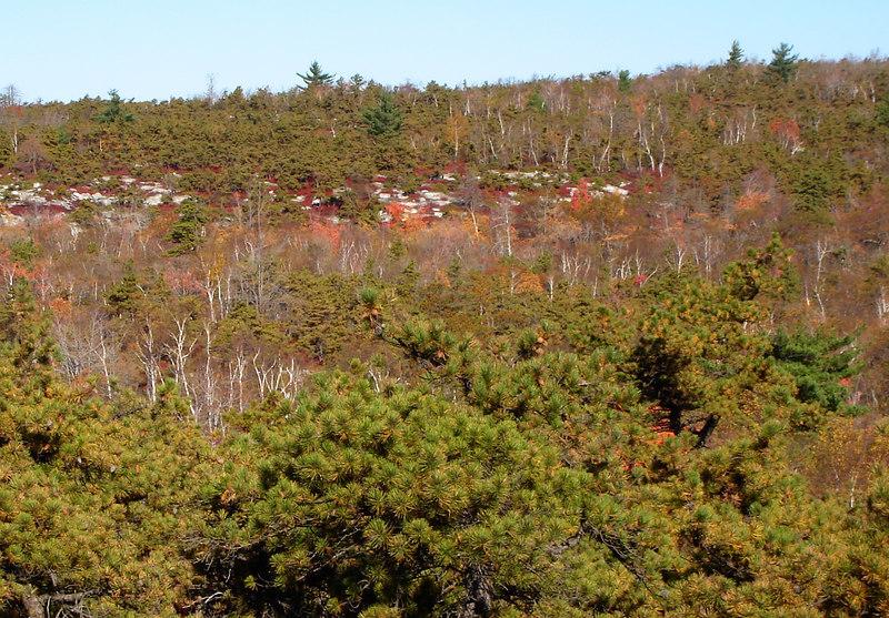 Awosting Reserve lands