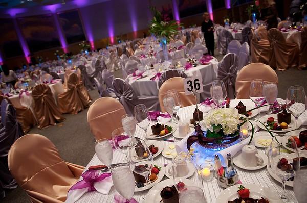 Alzheimer's Gala 2011