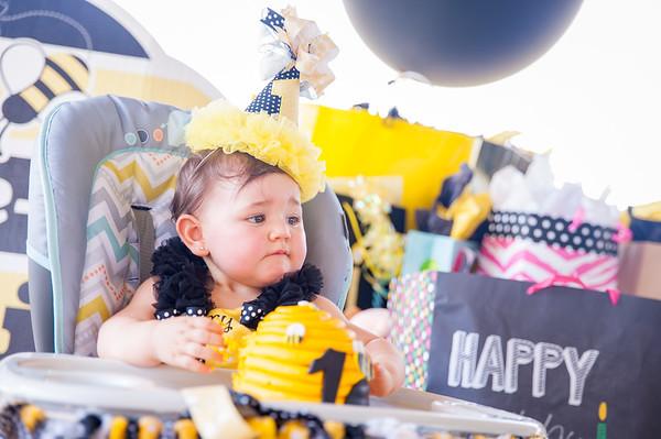 Reesie 1 year Birthday Party