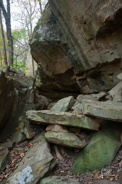 Shawnee National Forest-19