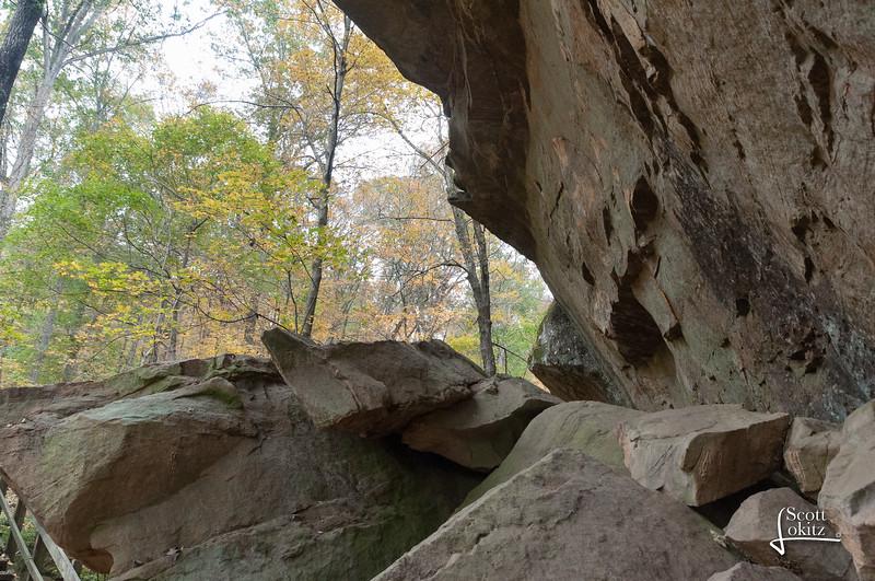 Shawnee National Forest-21