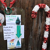 The Townsend farm Shay's Showbirds Flock of Fun Farm excepts Christmas trees to help feed their goats. Tey have a spot near thier front gate where you can drop off your tree if they are not around. SENTINEL & ENTERPRISE/JOHN LOVE