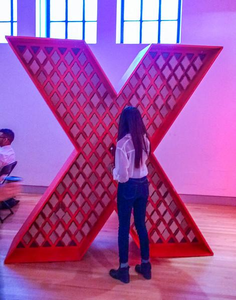TedX--9